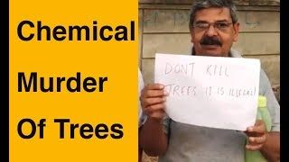Plot to kill trees for school