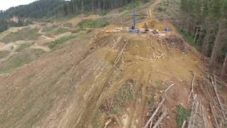 Moutere Logging