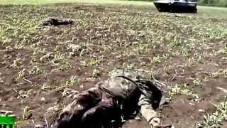 Бои в Донецкой области  Жертвы среди карателей,My Edited Video