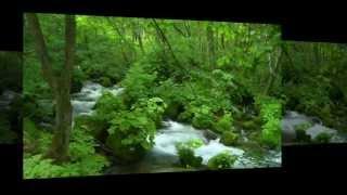 Sugarstone Creek - Newgrass - Bluegrass Music