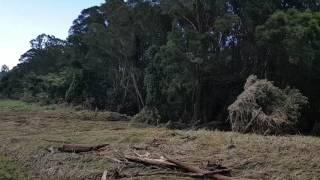 Baixar Coomera rlver day after floods