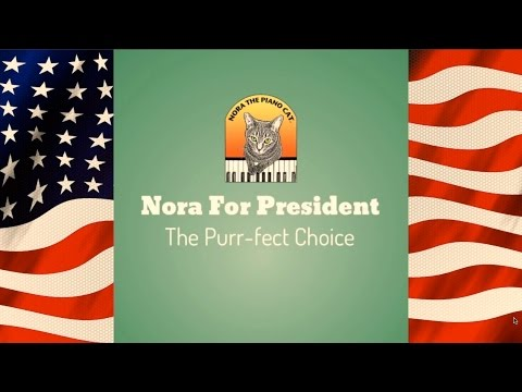Nora The Piano Cat™ For President: The Purr-fect Choice