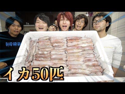 【フルコース】イカ50匹を料理して全部食い尽くす!!