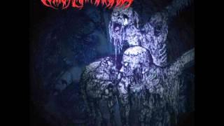 Vomit Remnants-Putrefying Dead Flesh