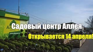 Садовый центр Аллея - Открытие с 14 Апреля!