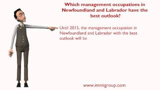 Which management occupations in Newfoundland and Labrador have the best outlook?