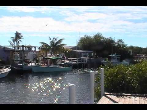 Part 5 Breezy Pines Rv Estates Big Pine Key After Hurr