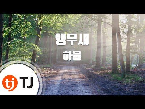 [TJ노래방] 앵무새 - 하울(Howl) / TJ Karaoke