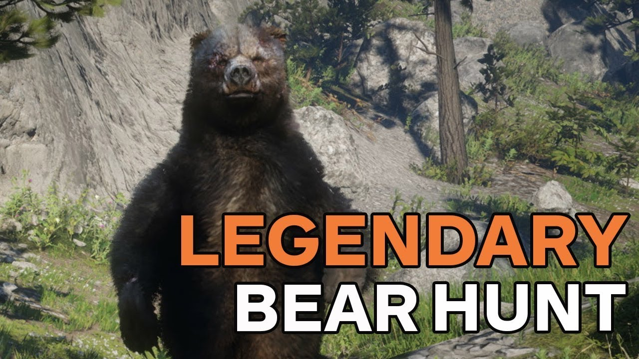 a70c37cc4e1 Red Dead Redemption 2: How to Hunt the Legendary Bear - YouTube