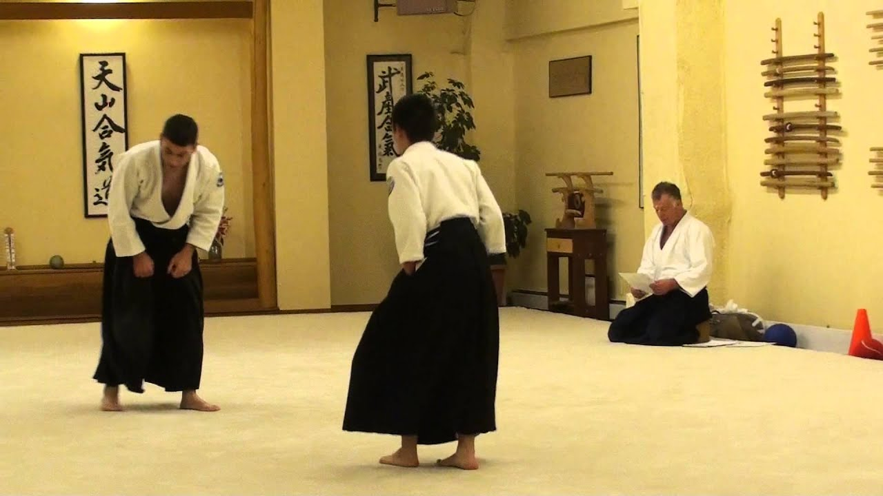 aikido black belt essay The black belt should not only symbolize the mastery of techniques required to reach the black belt level, but it should also symbolize maturity, mental and physical strength, humility and respect, and overcoming fear of failure among other things.