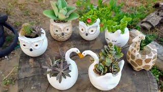 Vasos De Cimento Para Cactos E Suculentas