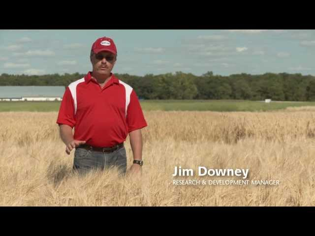 SeCan - Seed Varities - CDC Meredith Travel Video
