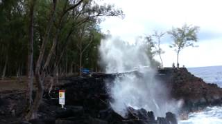 McKenzie park cliffs in Puna Hawaii