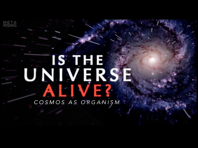 The Living Universe - Documentary about Consciousness and Reality   Waking Cosmos