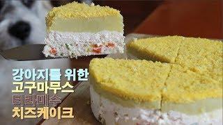 강아지 치즈케이크 만들기 /Cheese cake for dogs /서담 /SEODAM