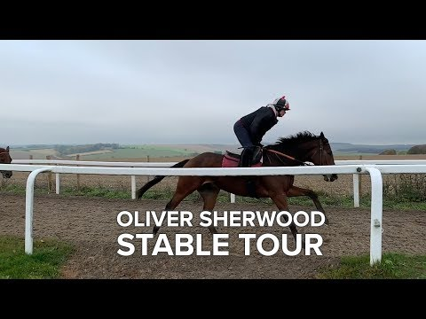 Oliver Sherwood Stable Tour