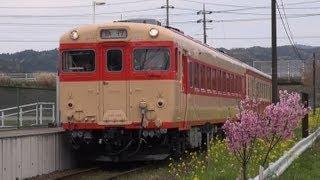 いすみ鉄道の話題 2013年3月 ~菜の花シーズン・キハ28~