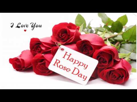 Happy Rose day 2017 (7th February)- Romantic Wishes/Greetings/Whatsapp Video/E-card/Full HD Video