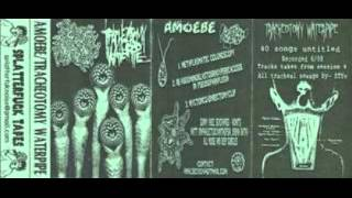 AMOEBE -  Metaplasmatic Colonoscopy&Nyctonco-Emrectomyclip