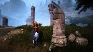 MMORPG Black Desert -White Horse- flash acceleration