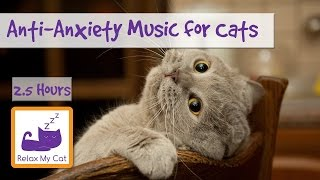 AntiAnxiety Music for Cats and Kittens! Soothe your Cat with our Relaxation Music!  #ANXIETY05