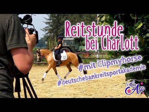 Lia & Alfi - FMA mit clipmyhorse.tv  bei Charlott Schürmann