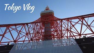 [Vlog] 도쿄 유학생 브이로그 | 도쿄타워 주변 돌…
