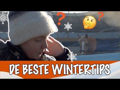 Paarden verzorgen in de winter | PaardenpraatTV