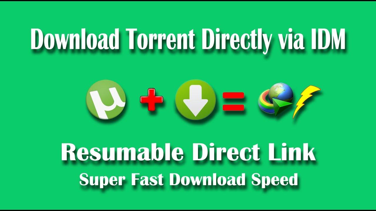 download torrent url file directly online