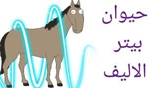 حصان بيتر متخلف عقليا   family guy