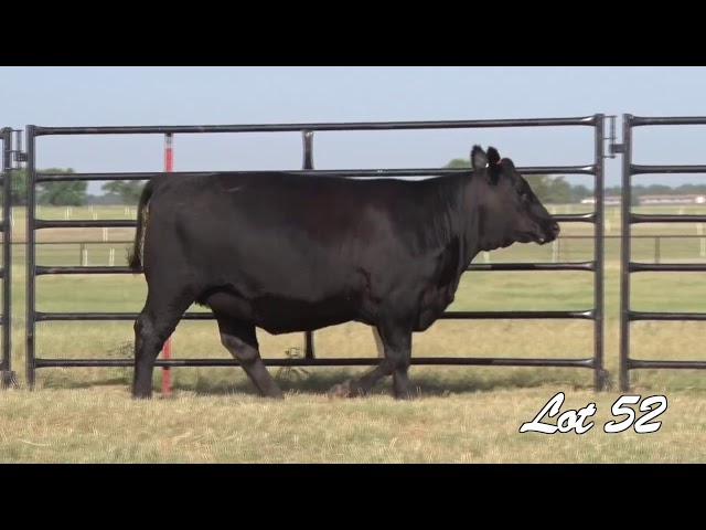 Pollard Farms Lot 52