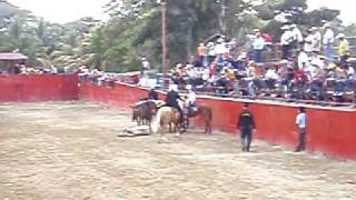coleo campeonato nacional destete 2009 san felipe yaracuy