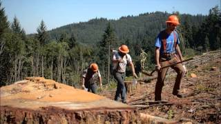 Find Your Path: Logging Crew
