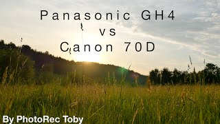 Panasonic GH4 vs Canon 70D(A followup to my review of the GH4 - How does it compare to the Canon 70D, Features, Quality and Autofocus for video? $200 PRICE DROP ON THE GH4: ..., 2014-08-18T22:22:49.000Z)