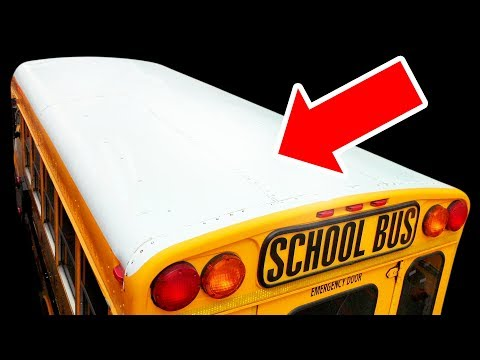 Why School Buses Always Have White Roofs
