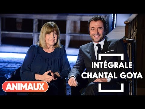 Chantal Goya dans Animaux Stars (intégrale) - Animaux