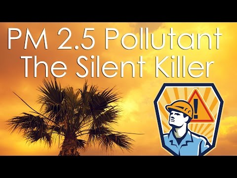 The Invisible Killer PM 2.5 Air Pollutant Explained