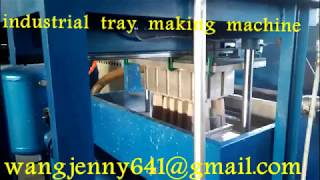 waste paper forming egg tray making machine 0086-15153504975