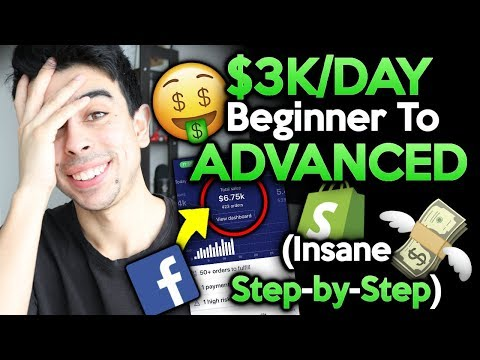 (FREE Course) $3k/day Beginner To Advanced Step By Step | Shopify Dropshipping 2019 thumbnail