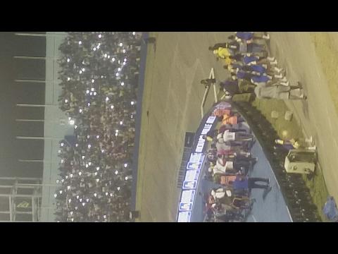 Jamaica crowd screaming Usain Bolt
