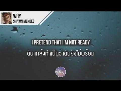 แปลเพลง Why - Shawn Mendes