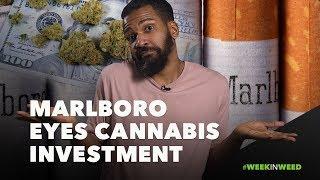 This Week in Weed: Marlboro Ready to Buy Marijuana?!