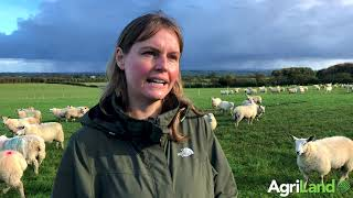AgriLand speaks to Amy Jackson about organic farming and about her new business Lacka Organic Lamb