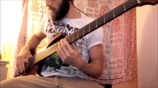 Between the Buried and Me - Ants of the Sky (Bass Cover)