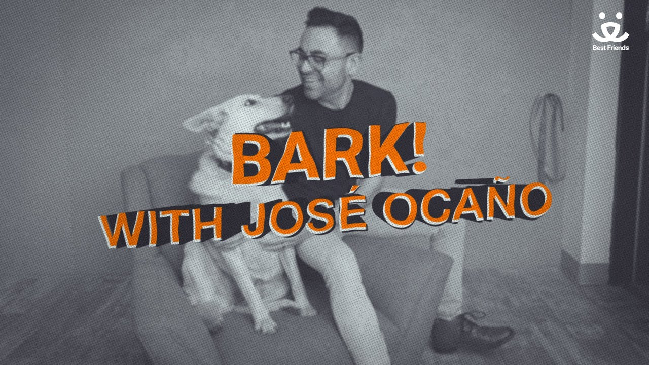 "BARK! Ep. 4 feat. Urban Grass performing ""Walking Days"""