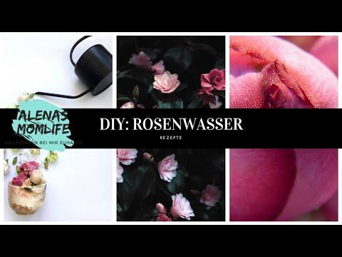 Bevorzugt DIY: ROSENWASSER 100% selbst herstellen - YouTube BJ09