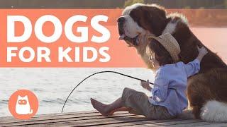 10 Best DOGS for CHILDREN 🐶👧🏼 Kid-Friendly Breeds
