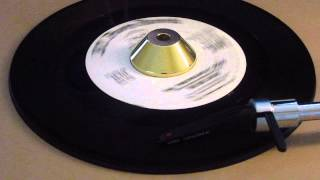 Del Satins - The Throw Away Song - B.t. Puppy Records: 514 DJ