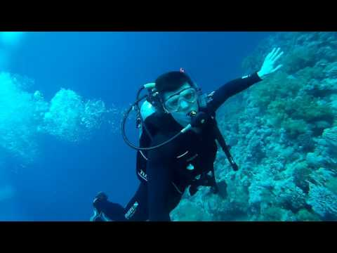 Treasuries of Red Sea: Diving @ Gordon Reef (Tiran Island)