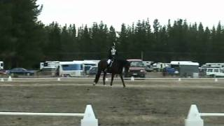 Dressage Billy on Lad.avi